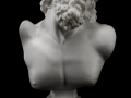 Bust of Laocoon 004.png